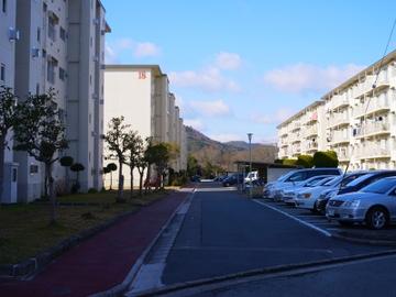 R01062011_004