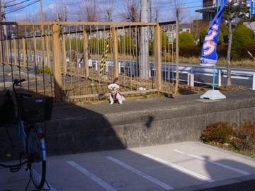 R01062011_006