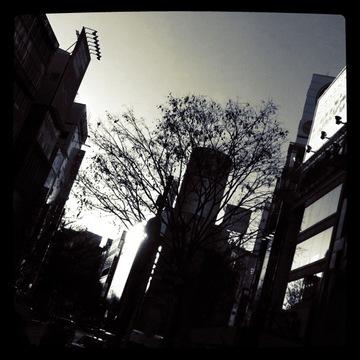 2011_0201_006